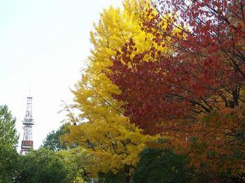 Sapporo0003