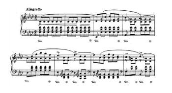 Chopin2817_2