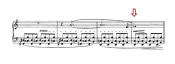 Chopin282b_2