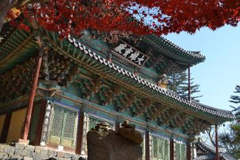 Gongju0607