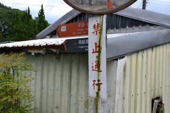Lingjiao_0359