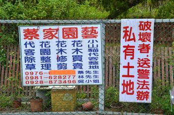 Lingjiao_0363