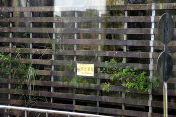 Taipei_0039