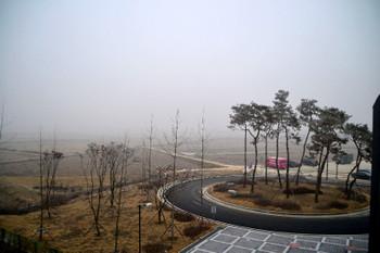 Gyeonggang_0247