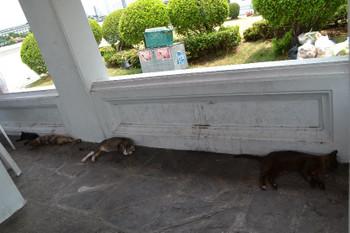 Bangkok_0930