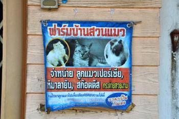 Trang_0758