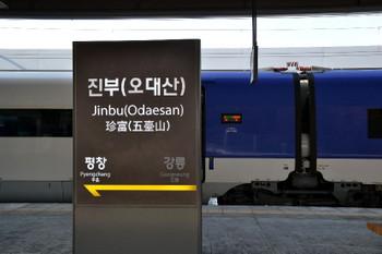 Jinbu_0241