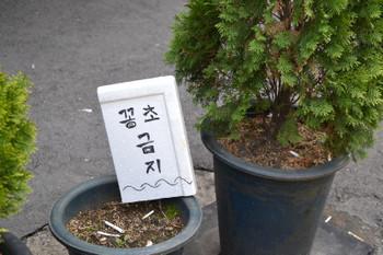 Seoul_0052